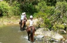 Horseback Ride, Cairns, Australia