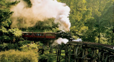 Puffing Billy Steam Train, Melbourne, Australia