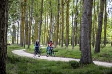 Hawke's Bay Cycling Tour