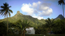 Free Day to Explore Rarotonga