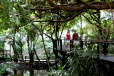 Rainforest Habitat, Port Douglas, Australia