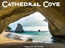 Auckland Cathedral Cove Tour