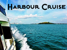 Harbour Cruise in Auckland