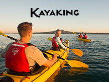 Kayaking in Auckland