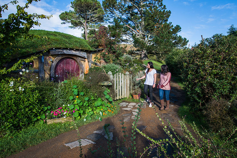 Gorgeous view of the Hobbiton Movie Set