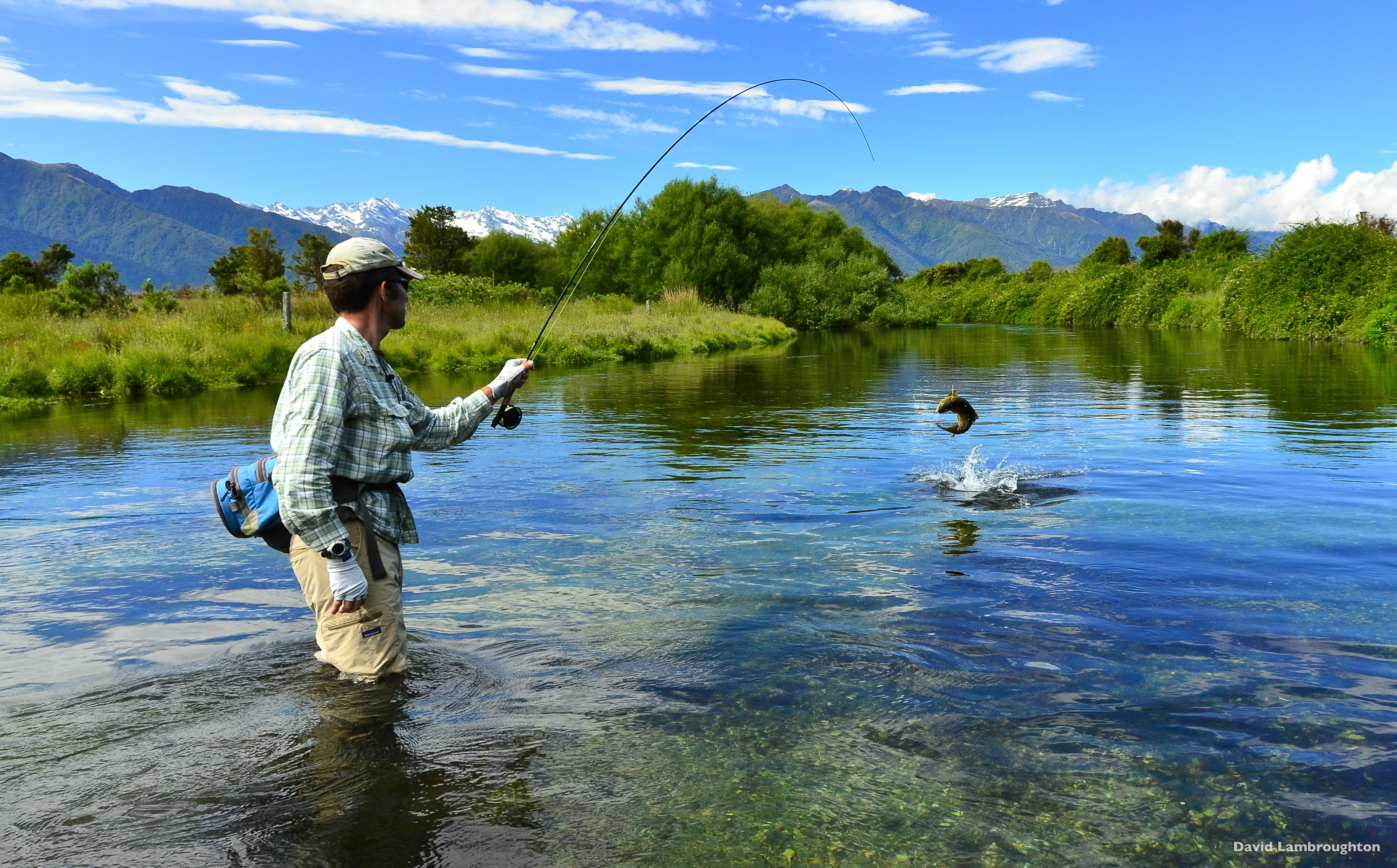 Travel tips to new zealand archive about new zealand for New zealand fishing