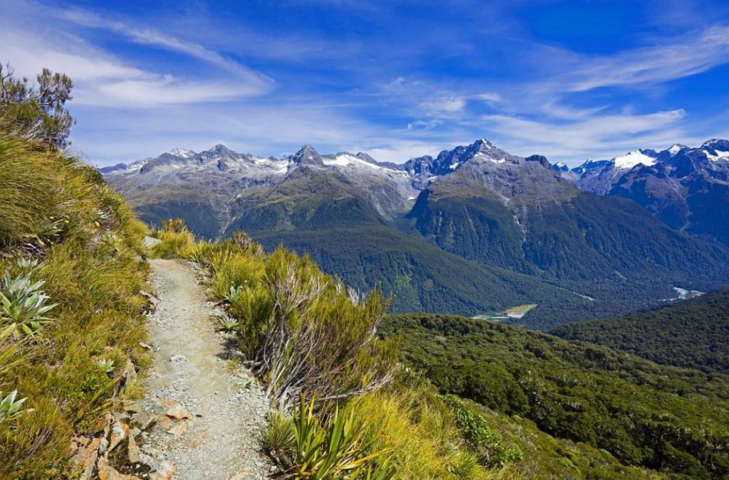 Gorgeous View of Hollyford Valley on Routeburn Track