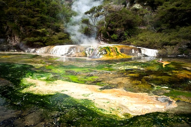 Waimangu Geothermal Region New Zealand Volcanoes
