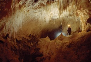Overseas Adventure Travel Waitomo Caves