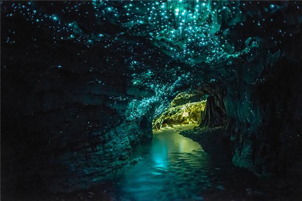 Boat tour through the Waitomo Glow Worm Cave