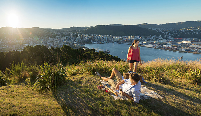 Things to do in Wellington Mount Victoria credit Julian Apse