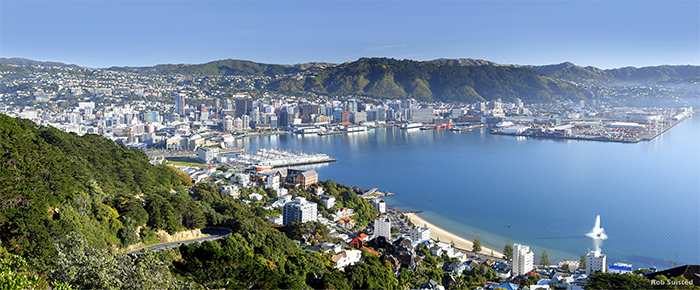 Wellington from Mount Victoria credit Rob Suisted