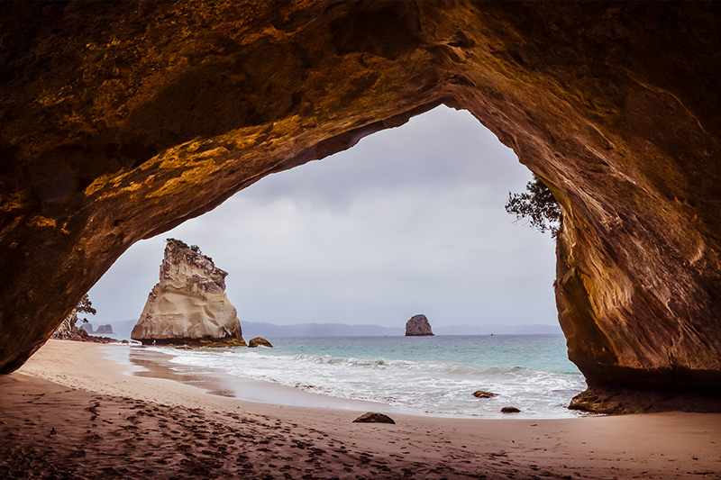 Cathedral Cove things to do in New Zealand