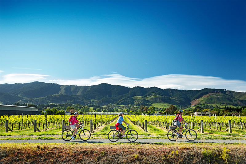 Women biking through Nelson vineyards credit Dean McKenzie